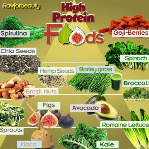 Protein Foods For Vegetarian Babies