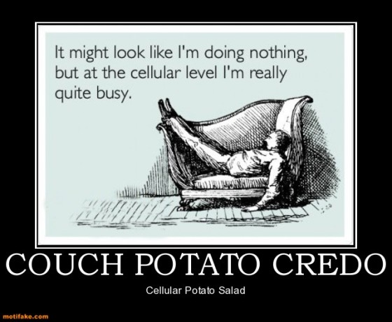 couch-potato-credo-lazy-demotivational-posters-1353121529