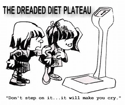 Image result for weight plateau cartoons