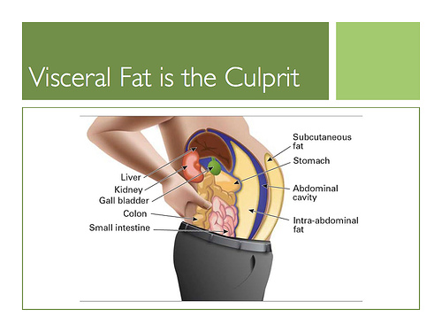 Dangers Of Visceral Fat 16