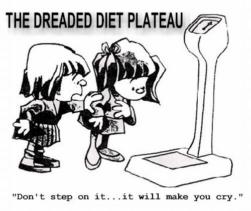 Diet_Plateau_cartoon